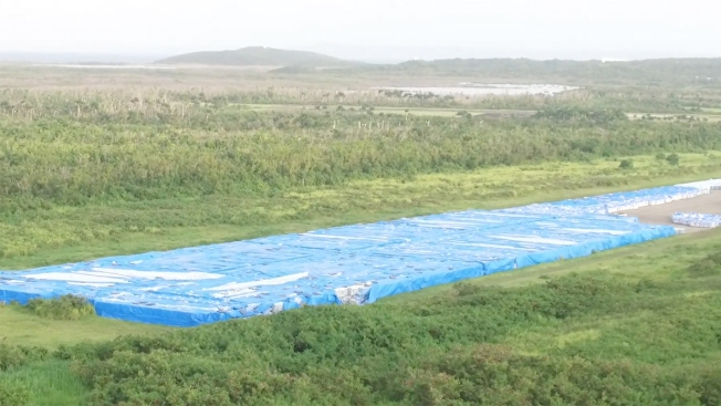 Organ Donation: The Ultimate Gift