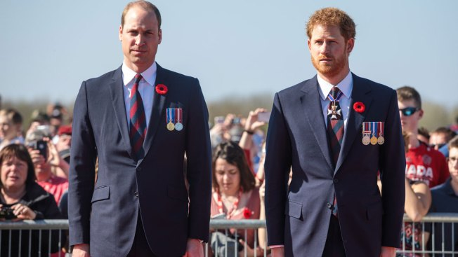 Prince William and Prince Harry to attend service at Diana's grave