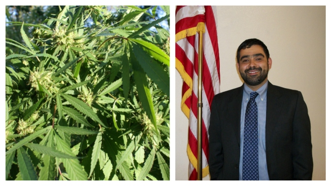 Calif. Pot Clinic Owner Turns Mayor
