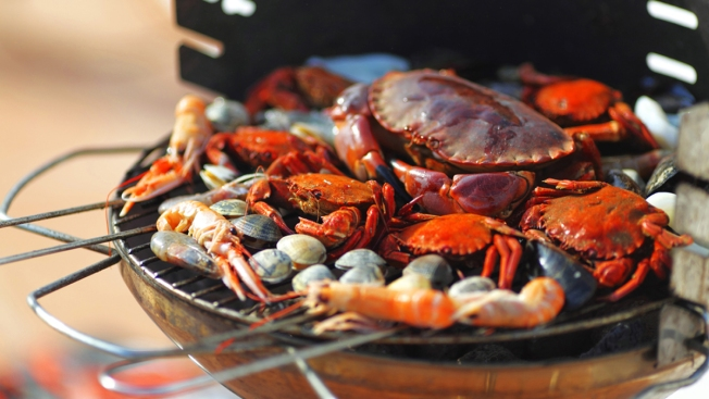 All the Important Stuff: Chesapeake Crab and Beer Festival