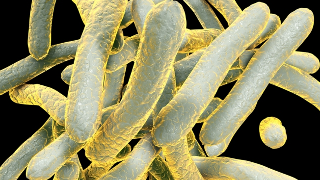 2 People at Henry Wise Jr. High School Diagnosed With Tuberculosis