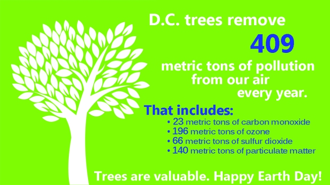 Happy Earth Day! 18 Facts About the D.C. Area's Environment