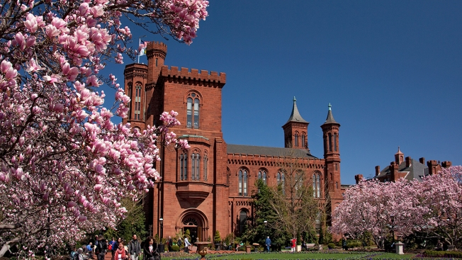 You Can Now Rent Out a Smithsonian Museum for Your Special Event