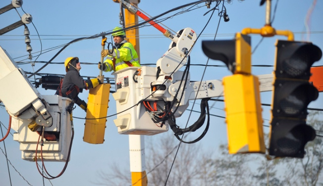 Falling Branch Causes Northeast Power Outage