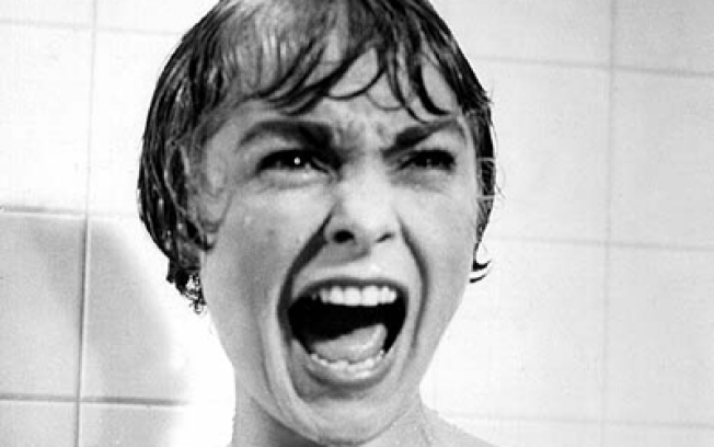 "Not Since ""Psycho"" Have Showers Been This Scary"