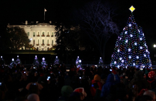 National Christmas Tree Ticket Lottery Opens