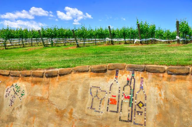 Top 5 Virginia Wineries