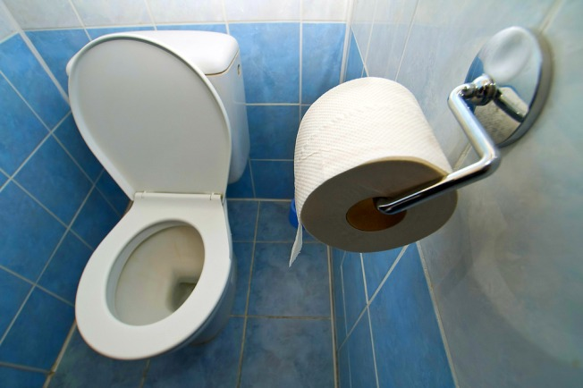 One for the Memory Books: World Toilet Day