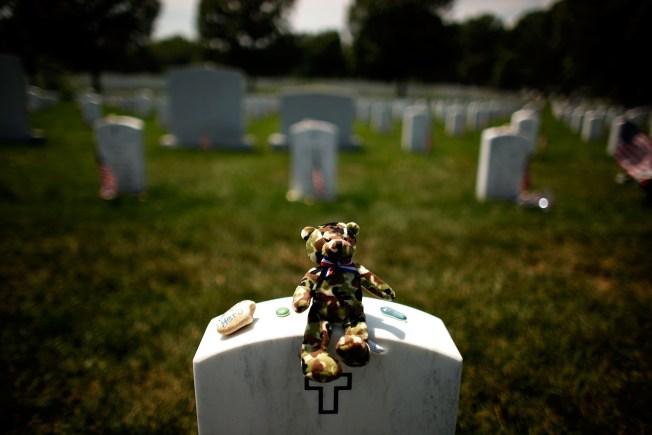 Arlington Cemetery Grave Gaffe Growing