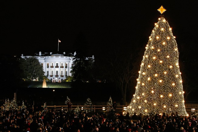 New Christmas Tree Planted Behind White House
