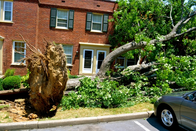 Falls Church, Stafford to Get Federal Aid for Storm Damage