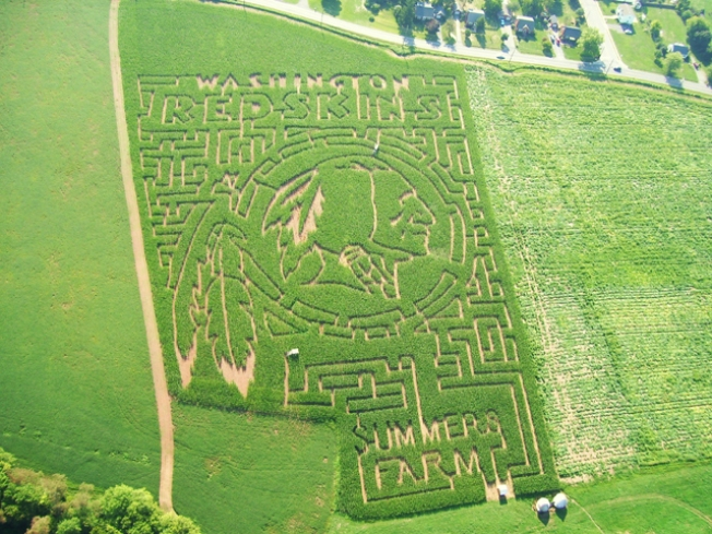 Giant Redskins Corn Maze Built at Md. Farm