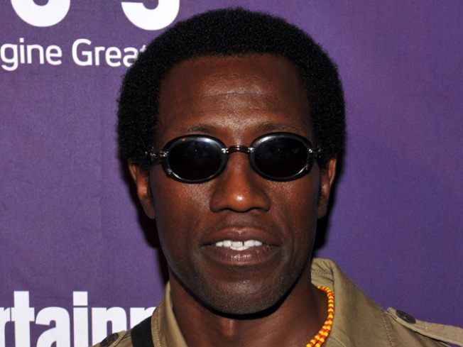 Wesley Snipes Argues For New Trial In Florida