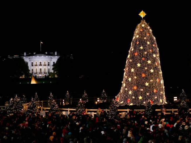 Kermit, Carson Daly Slated to Appear at National Tree Lighting