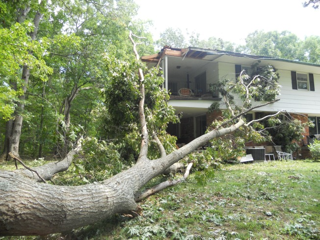 Irene Aftermath: Cleaning Up With a Contractor