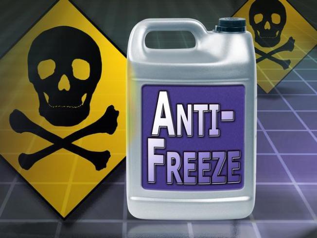 Elderly Mom Sentenced in Antifreeze Poisoning