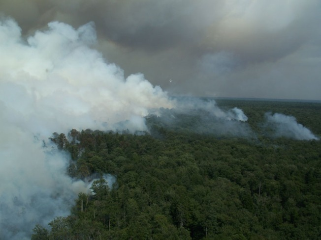 Irene Soaks Great Dismal Swamp Fire