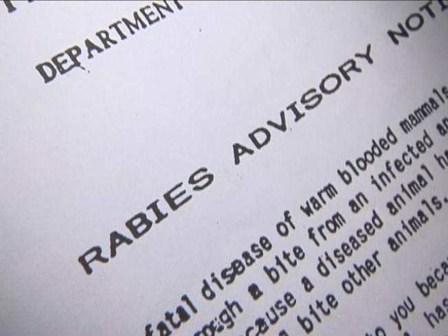 Rabies Alert in Prince George's County