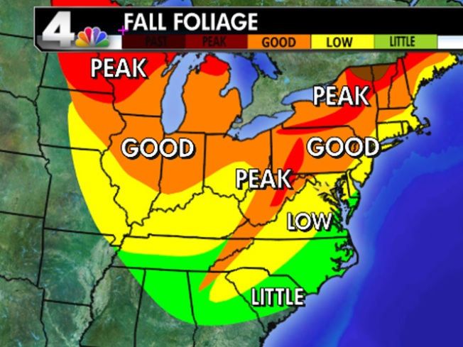 Your Fall Foliage Update: 10/15/10