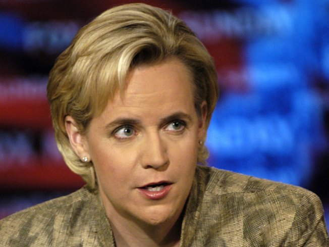 Child No. 2 for Mary Cheney, Partner