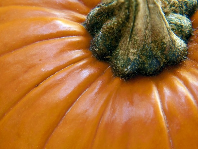 The Great Pumpkin, on Your Plate