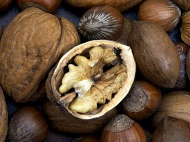 Virginia's Crackdown on Transporting Walnuts