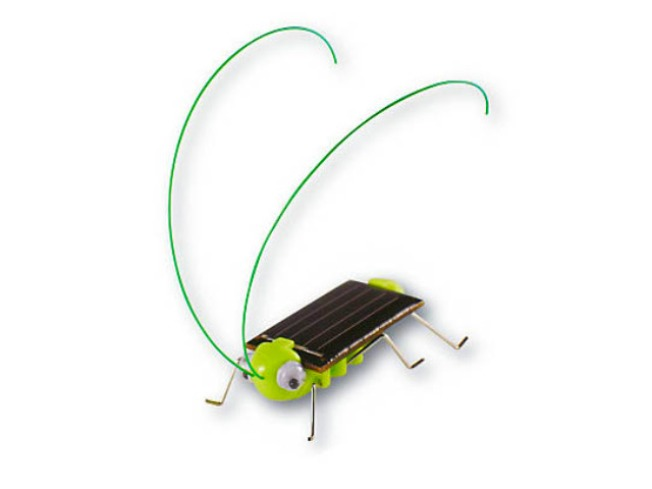 Solar-Powered Bug (Not for Swatting)