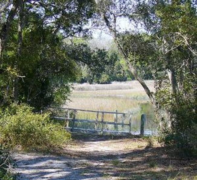Florida Voters Lift Property Taxes for Conservation Lands