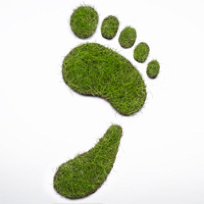 Arlington Kicks Off Green Games