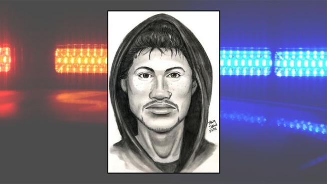 Sketch of Suspect in Attempted Abduction Released