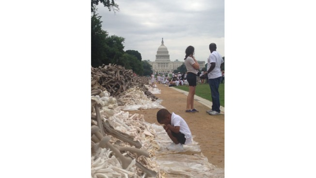 One Million Bones on National Mall This Weekend