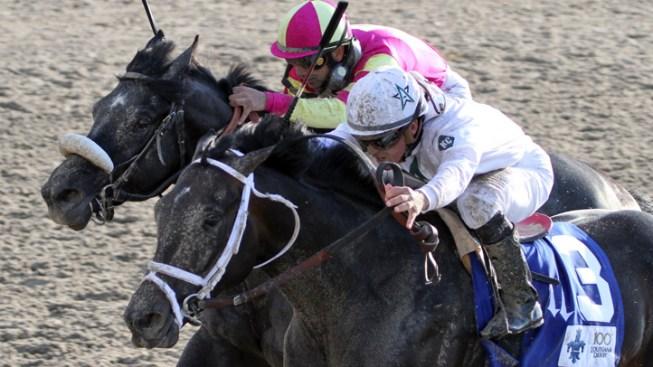 139th Kentucky Derby is Pletcher-Dominated Affair
