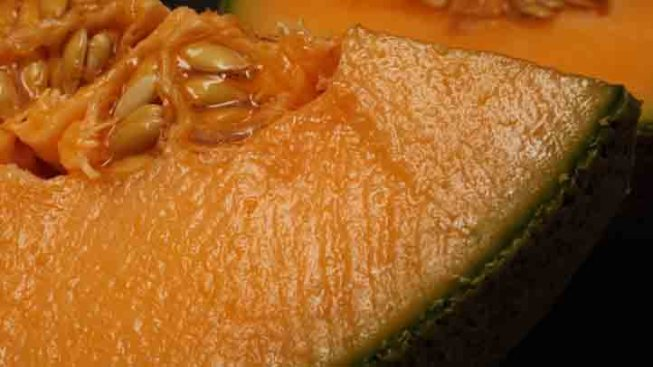 FDA Cites Dirty Equipment in Cantaloupe Listeria