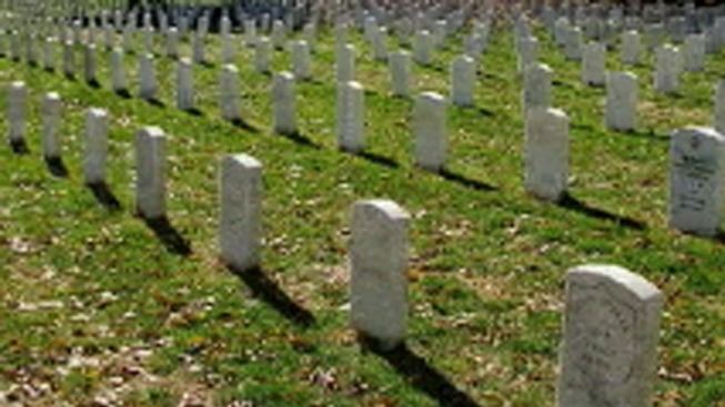Calls for Action on Arlington Cemetery Investigation