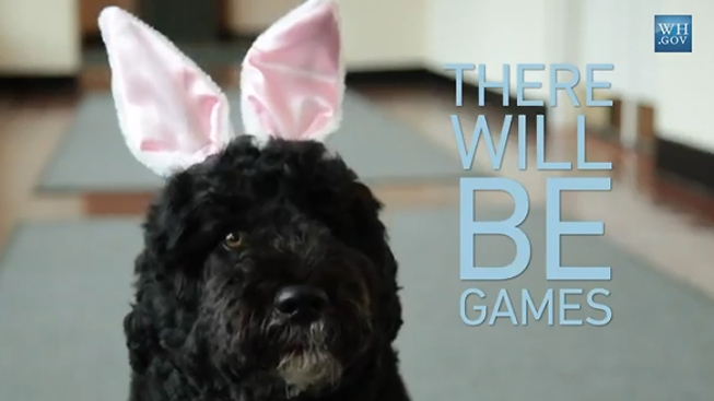 Bo Obama Competes With Easter Bunnies