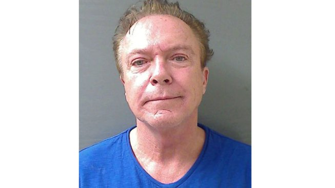 David Cassidy Charged with DWI Outside Albany