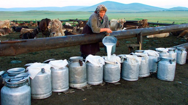 Fighting for the Right to Raw Milk