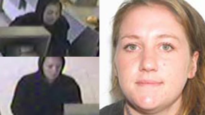 """Blond Bandit"" Pleads to Carjackings, Bank Thefts"