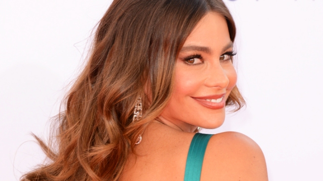 Sofia Vergara Planning for Another Baby, Has Her Eggs Frozen