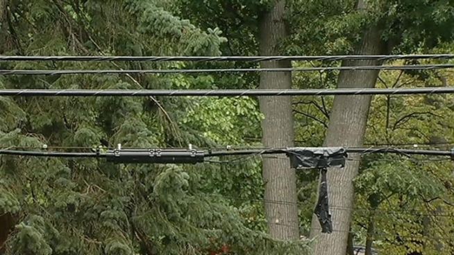 A man was electrocuted Saturday morning while trimming trees near power lines in Takoma Park.  News4's Derrick Ward has more.