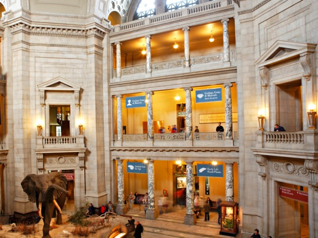Smithsonian to Open Human Evolution Hall