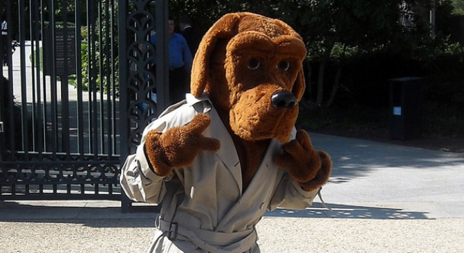 mcgruff survives a beat down nbc4 washington