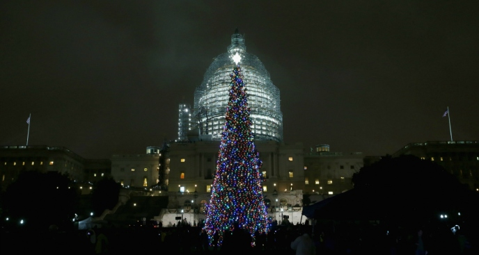All the Way From Idaho, US Capitol Christmas Tree on Its Way to DC