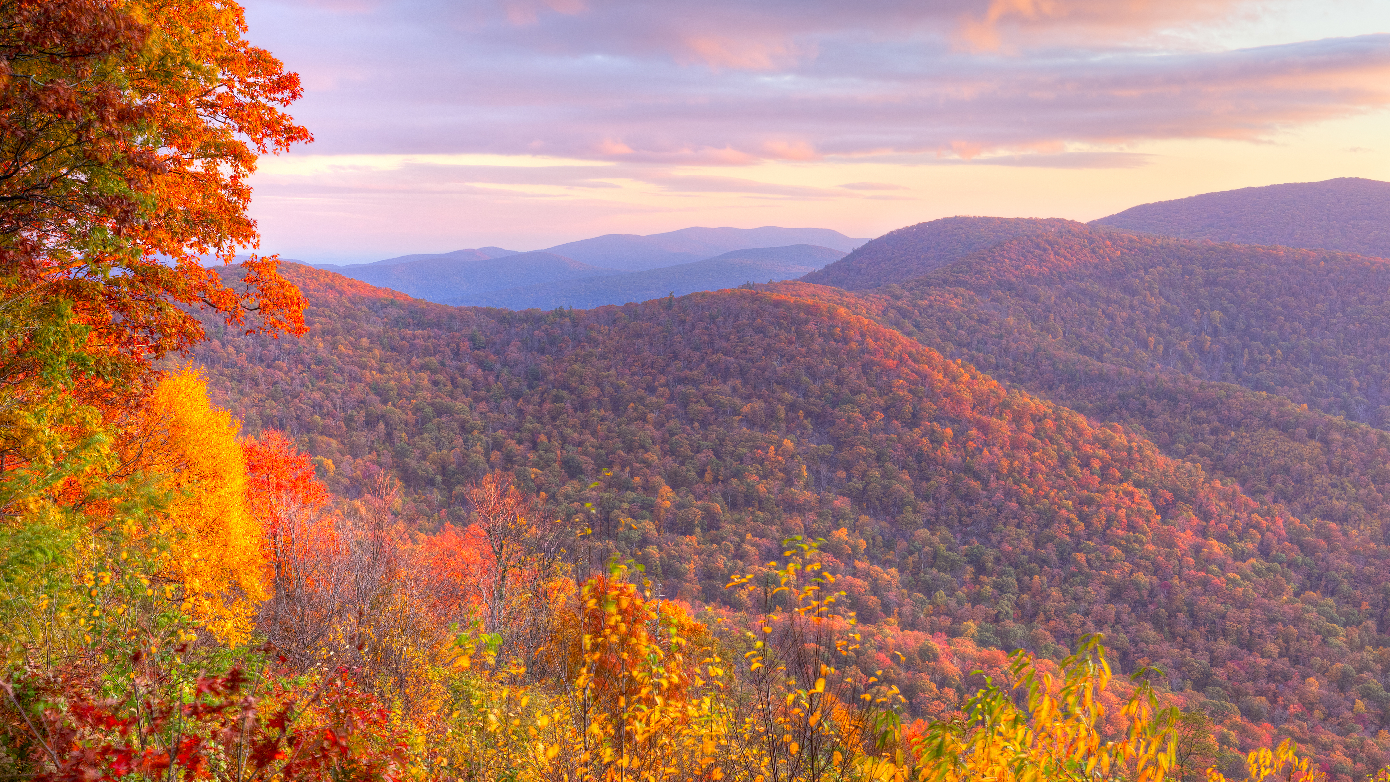 Best Places to See Fall Foliage in the DC Area