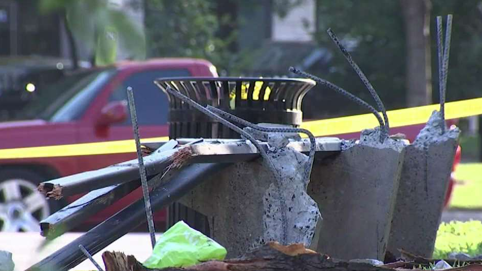 Driver Who Crashed Into DC Park, Killing 2, Pleads Guilty